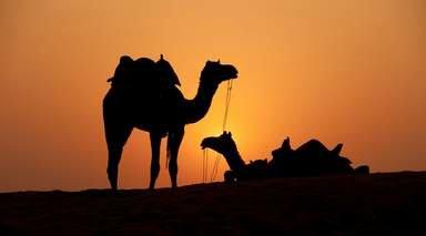 Marrakech y Desierto de Zagora