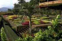 Hotels in Funchal