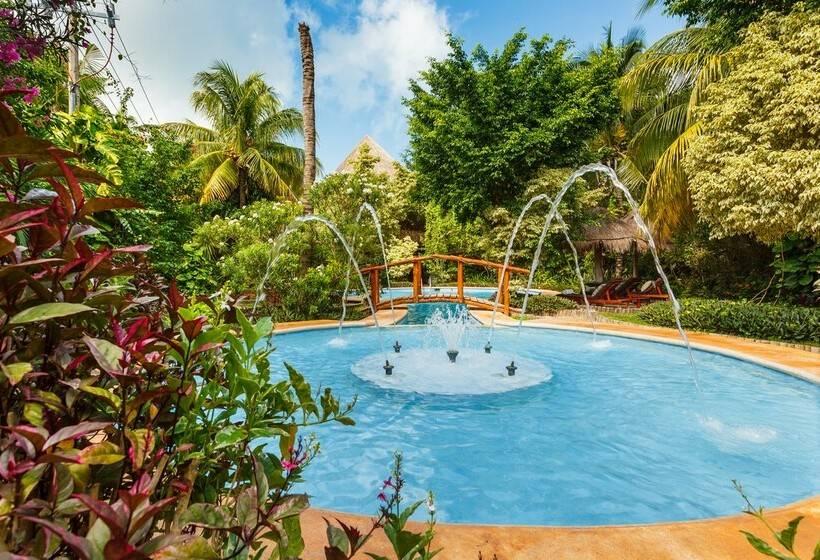 Hotel villas hm paraiso del mar en isla holbox destinia for Villas hm paraiso del mar holbox tripadvisor