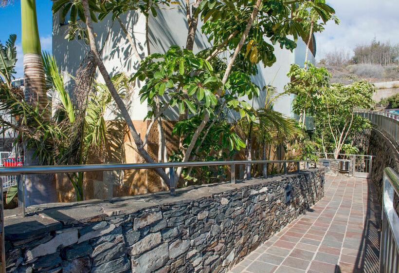 Apartamentos Marinasol San Agustin