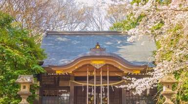 Kichijoji Daiichi - Tokyo