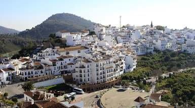 Huerto Del Condeplaza De La Merced -                             Malaga