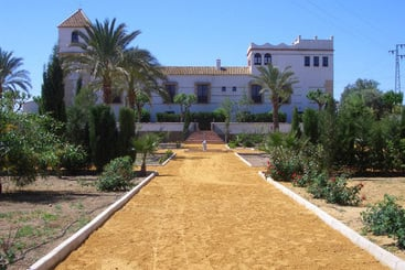 Hacienda Los Jinetes - Carmona