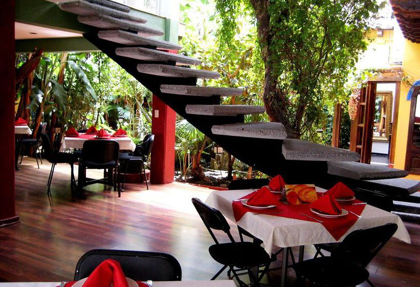 Hotel jardines del centro en san crist bal de las casas - Casas y jardines ...
